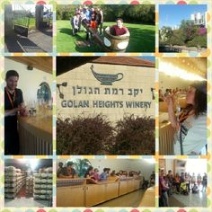 Golan Heights Winery Photo Credit: Rebecca Spiegel