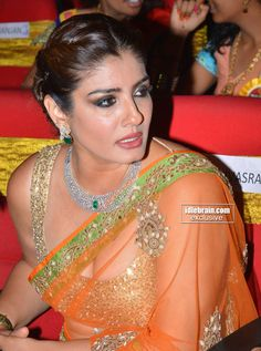Raveena Tandon looking stunning in transparent Saree at TSR Awards