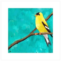 null 'Yellow Goldfinch On Turquoise' would be a sweet and dignified addition to any mini framed canvas grouping. Shop this artist's collection for more charming avian art. Size: H x W x D, Format: Wrapped Canvas Cow Painting, Painting Frames, Painting Prints, Watercolor Paintings, Simple Canvas Paintings, Canvas Art, Framed Canvas, Canvas Groupings, John James Audubon
