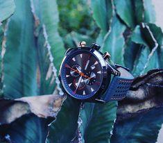 Relojes Forest - Relojes de diseño con estilo deportivo casual Omega Watch, Quartz, Watches, Accessories, Instagram, Fashion, Stuff Stuff, Designer Watches, Athletic Style