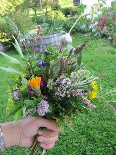 Kräuterbuschen für die Kräuterweihe zu Mariä Himmelfahrt