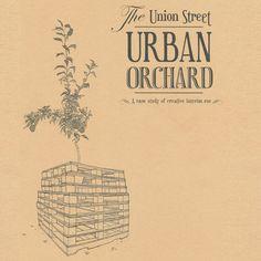 Urban Orchard Book