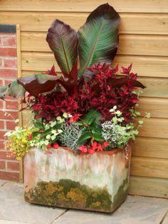 East Ruston Old Vicarage Garden-Norfolk