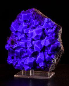 "5.9"" Blue-Green Glassy Gem Cubic FLUORITE Crystals to .8"" Rogerley M UK."