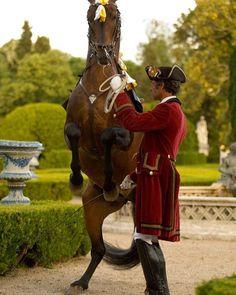 Pousada, exercício da Escola Portuguesa de Arte Equestre #parquesdesintra #EPAE #portugal #unesco #worldheritage #heritage #visitportugal #placetovisit #cavalo #horse #equestrian #equestrianart ©PSML Pedro Yglesias