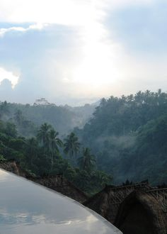 Ubud, Bali...one of the most gorgeous places in the world.