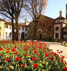 Buongiorno #Milano Primavera a Sant'Eustorgio Foto di Silvia Zinanni #milanodavedere Milano da Vedere