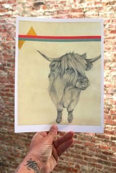 Highland Cow Print by Lisa Congdon $18