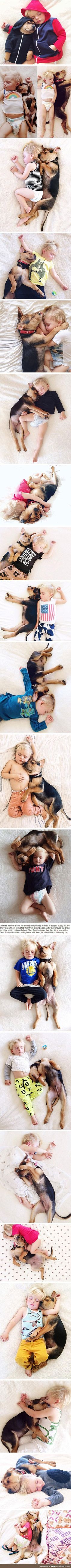 This toddler napping with his best friend