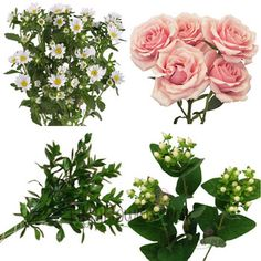 FiftyFlowers.com - Make Your Own Flower Centerpieces Combo Box  $99 40 stems of mini spray roses, 2 bunches of white asters, 2 bunches of white hypericum berries, and 4 bunches of ruscus greenery. This is the perfect combination of Focal, Filler and Greenery to create the flower arrangements you need!