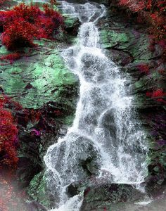 ✮ Georgia Falls