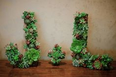 Many craft and home stores sell wooden or cardboard letters that you can hollow out and add flowers or other plants. Use it to make your initials or a short welcome message. 10 Unconventional Ways to Display Plants Succulents Diy, Planting Succulents, Succulent Wreath, Succulent Ideas, Succulent Wall, Succulent Plants, Bouquet, Wedding Events, Weddings