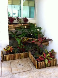Jardins modernos por Bambootec