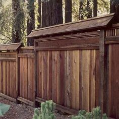 Renewing your pressure-treated pine fence with a semitransparent stain fortified with UV blockers can halt damage while giving it a warm tone that mimics pricey hardwood. |  Photo: Barbeau Engh/California Redwood Association | thisoldhouse.com