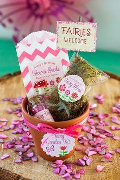 Garden Fairy Kit