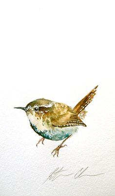 Watercolor Painting Original Bird Painting Wren by WoodPigeon
