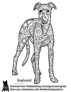 Greyhound Coloring Book Design by Elspeth Rose Buy Books at