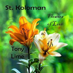 Österreich Salzburg, Ghana, Africa, Flowers, Royal Icing Flowers, Flower, Florals, Bloemen, Blossoms