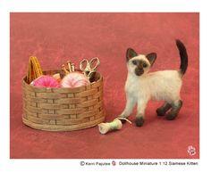 Siamese Kitten Kerri Pajutee