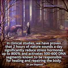 2 hours of nature sounds a day significantly reduce stress hormones up to and activates DNA segments known to be responsible for healing and repairing the body-Dr Joe Dispenza Fitness Workouts, Fitness Tips, Holistic Healing, Natural Healing, Holistic Medicine, Holistic Wellness, Natural Medicine, Ayurveda, Health And Beauty