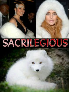 Anti-Fur  Lindsey...not surprised, Mariah, wtf, very disappointed... Stupid stupid people... Did I mention STUPID?!!.