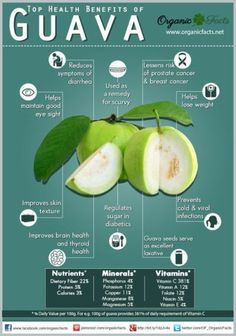 Foods for diabetics 5 guava guava controls diabetes and it is foods for diabetics 5 guava guava controls diabetes and it is good for constipation guavas are high in vitamin a and vitamin c and contain hig ccuart Image collections