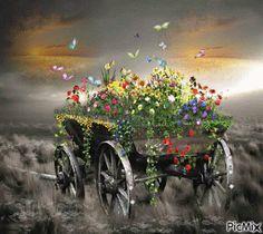 GIFS EM MOVIMENTOS E MENSAGENS: Borboletas parecem flor que o vento tirou para da...