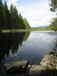 Duck Lake Protected Area, Powell River: See 18 reviews, articles, and 3 photos of Duck Lake Protected Area, ranked No.12 on TripAdvisor among 27 attractions in Powell River.