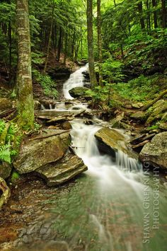 Mineral Springs Falls, Worlds End State Park, Pennsylvania