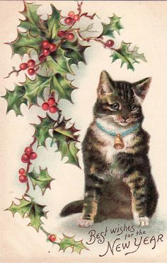 Vintage Postcard Kitten Best Wishes for the New Year (Image1)