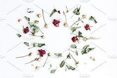 Frame made of dried rose flowers. Wedding Card Templates