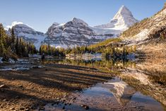 Summer hiking & photography guide to Mount Assiniboine Provincial Park in Canada. Hiking Club, Hiking Guide, Hiking Photography, Photography Guide, Lake George Village, Winter Hiking, Lake Forest, Canadian Rockies, Outdoor Camping