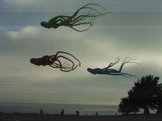 The Octopus Phenomenon Cthulhu, Aliens, Creepy, Scary, Go Fly A Kite, Night Vale, Photocollage, To Infinity And Beyond, Story Inspiration