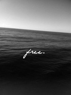 ocean. sea. free.