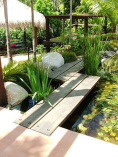 Asian influenced outdoor. tropical landscape