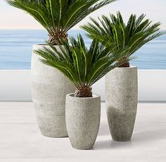 Selecting Plants for Container Gardening Occasionally, landscaping your home can be difficult, but most of the time it appears harder than it actually is. House Plants Decor, Plant Decor, Concrete Planters, Garden Planters, Container Plants, Container Gardening, Outdoor Plants, Outdoor Gardens, Potted Plants