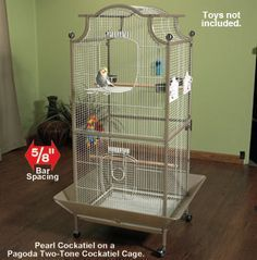 parakeet cages - Google Search