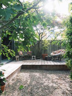 Urban jungle in Haarlem. Indoor Tropical Plants, Organic Water, Jungle Gardens, Garden Studio, Yard Design, Balcony Garden, Small Gardens, Garden Inspiration, Home And Garden