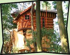 Ob es wohl Spaß macht, in ein Baumhaushotel zu gehen?