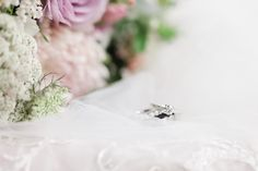 I'm an Auckland based photographer, available for weddings throughout New Zealand and beyond. I specialise in light, joyful, outdoor weddings, and aim to make you feel totally relaxed and comfortable in front of the camera. Anna, Wedding Day, Wedding Rings, Wedding Photography, Bridal, Detail, Outdoor, Inspiration, Pi Day Wedding