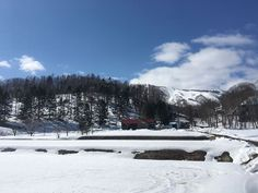 is watering down the dirt of in Japan, Adventure, Spring, Winter, Outdoor, Hokkaido, Winter Time, Outdoors, Adventure Movies
