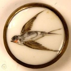 Liverpool Transfer, Liverpool England, Swallow, Metal Buttons, See Photo, Monochrome, Antique, Medium, Printed