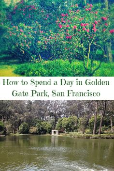 All my best travel tips for exploring Golden Gate Park in San Francisco, California!
