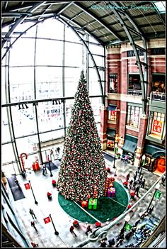 Christmas Tree at River Park Square, standing 53 feet tall! Spokane Washington, Washington State, Davenport Hotel, Centennial Olympic Park, Evergreen State, River Park, Coeur D'alene, Oregon Travel, Jet Plane
