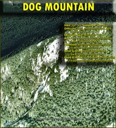 Dog Mountain in Mount Seymour Provincial Park - Vancouver Hiking Trails