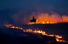 A cowboy keeps a close watch on the flames in the annual prairie burn on a ranch in the Flint Hills of Kansas.