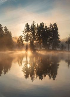 mist covered all over the lake at dawn. The sun behind the veil of Came out fog, and a fresh new start began. Landscape Photos, Landscape Photography, Nature Photography, Travel Photography, Terre Nature, Cool Pictures, Beautiful Pictures, Belle Villa, Photos Voyages