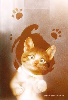 Японский художник-иллюстратор (род.1947 г.)       http://www.nfbv.ru/photo/nn/Makoto_Muram atsu/