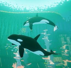 Abzu game on PS4, swimming with Orcas - Video Gaming.<--- Tan hermoso~ I think I've seen Killer whales a few times~
