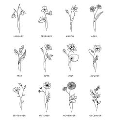 Dainty Tattoos, Mini Tattoos, New Tattoos, Small Tattoos, Delicate Flower Tattoo, Small Flower Tattoos, Birth Month Flowers, September Birth Flower, Rosen Tattoo Frau